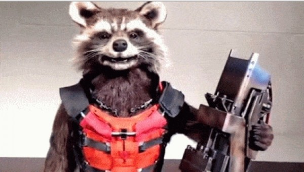 Rocket-Raccoon-robo2