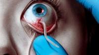 Band vai transmitir séries de terror e vampiros em 2015
