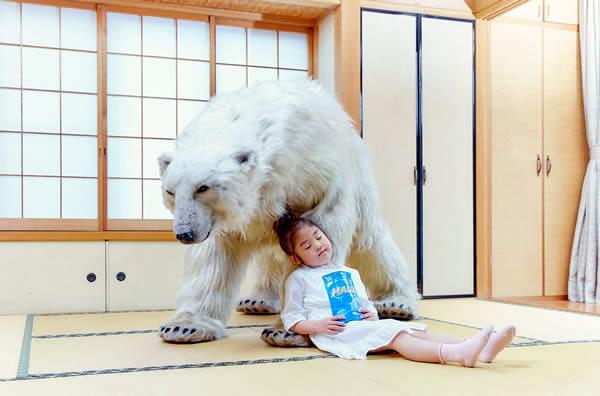 WTF Japão | Empresa pretende enviar urso polar para acalmar japoneses estressados
