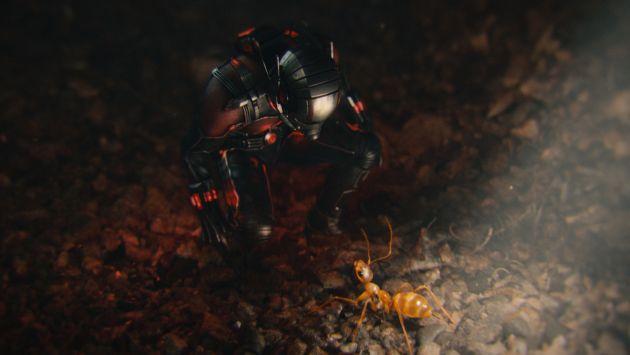 homem-formiga-11-fatos-interessantes-sobre-o-filme-antes-do-seu-lancamento5