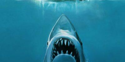 Garotinha reage de diversas formas ao escutar a trilha do filme Tubarão
