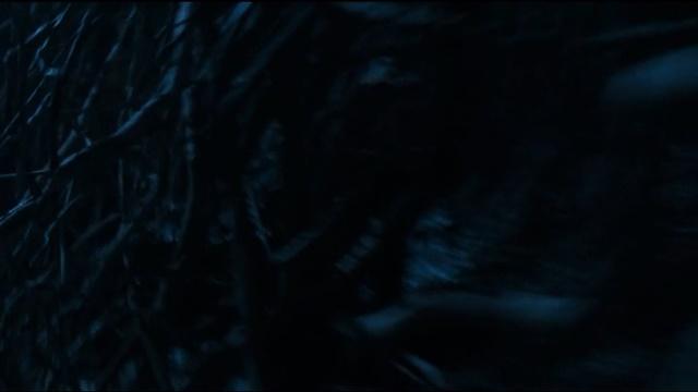 game-of-thrones-visoes-de-bran-blood-of-my-blood (35)