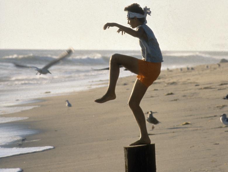 Curiosidades sobre 'Karatê Kid - A Hora da Verdade' (1984)